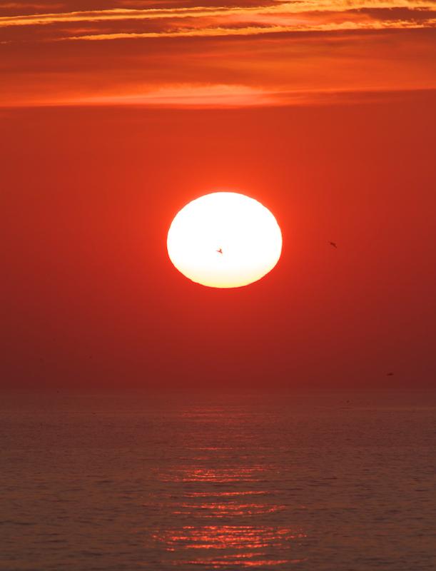 Coucher de soleil sur Palud Crugou, Plovan - Canon EOS 7D – 420 mm – f/6,3 – 1/640s – 125 ISO