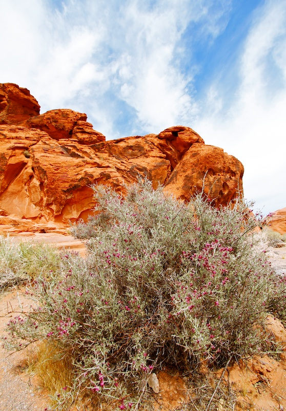 Beehives, Valley of Fire State Park, Névada