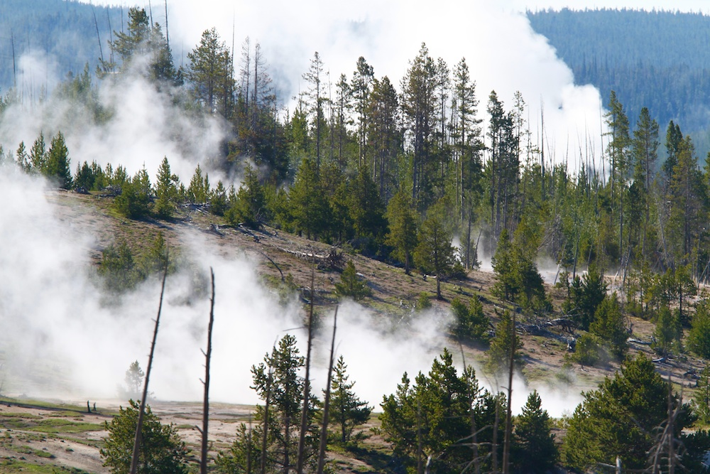 Foret de feu+Biscuit Basin+Yellowstone+Wyoming