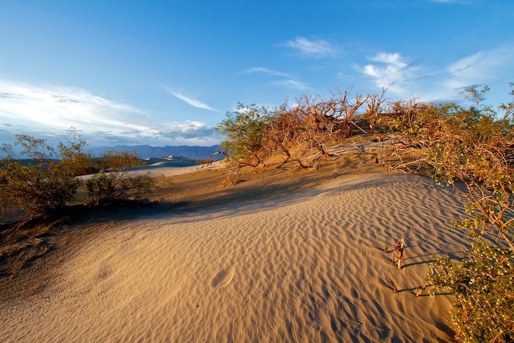 Coucher de soleil sur les Mesquite Flat Sand Dunes - Death Valley - Californie
