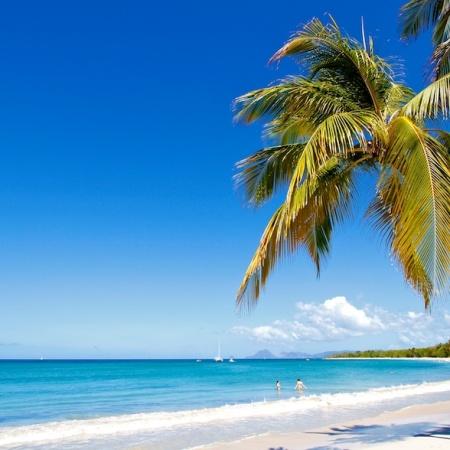 Grande anse des Salines, Martinique, paysages