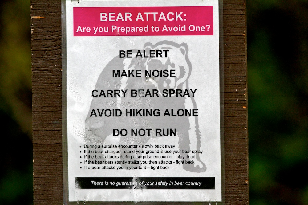 Bear+alert+Wyoming