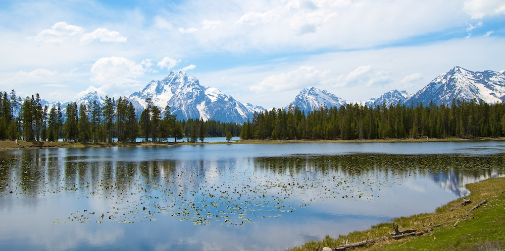 Heron pond+Grand Teton+Wyoming