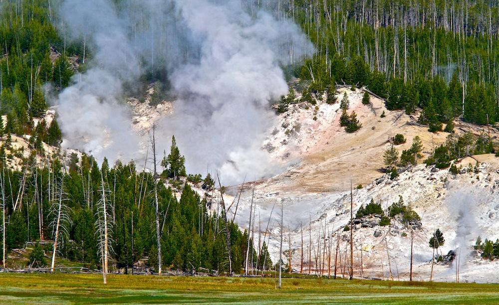 Foret de feu+Yellowstone
