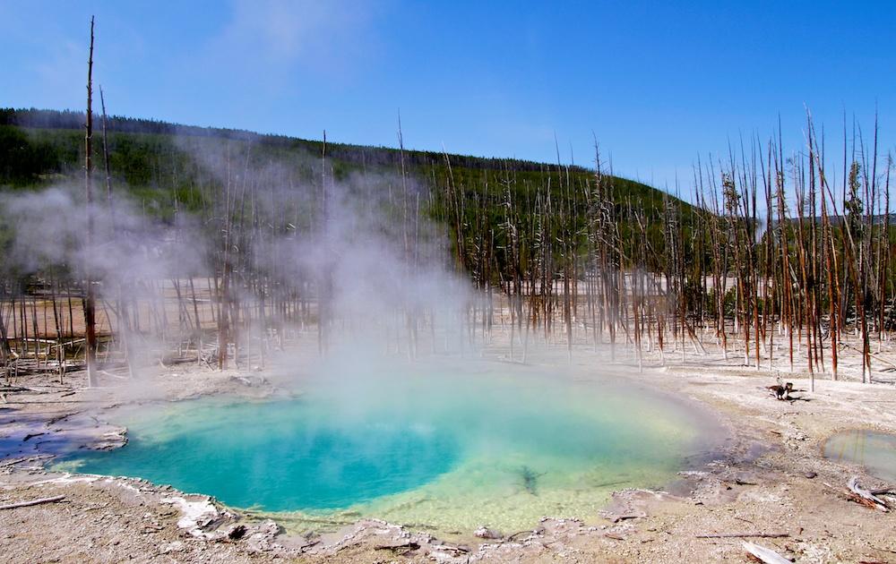 Cistern Spring+Norris+Geyser+Yellowstone