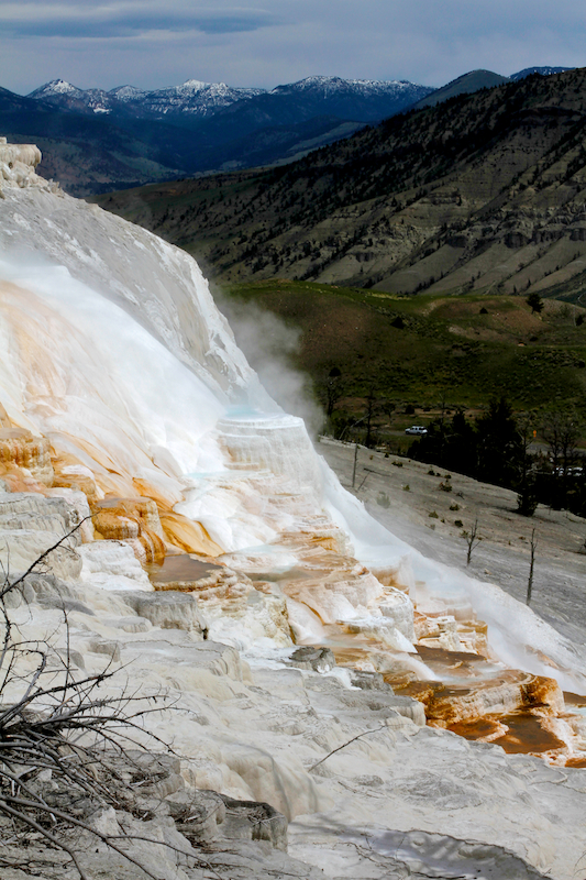 Mammoth Hot Springs+Yellowstone