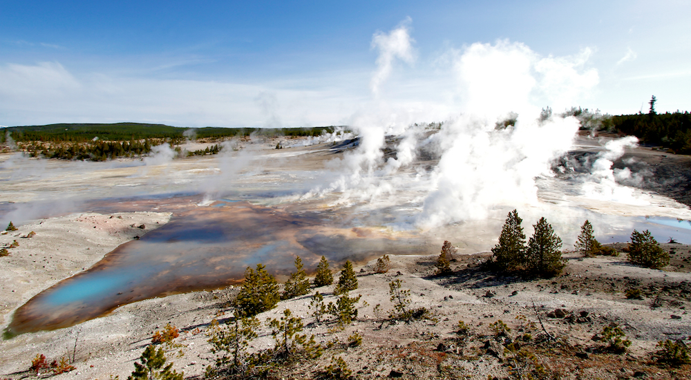 Porcelain Springs+Norris Geyser Basin+Yellowstone