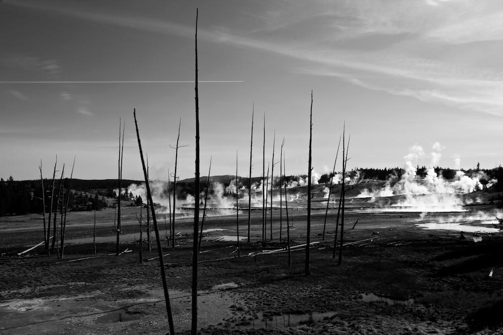 Porcelain Basin+Norris Geyser Basin+Yellowstone