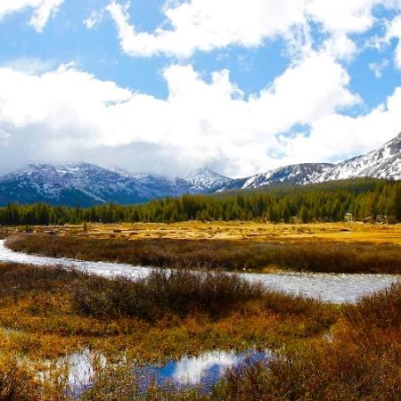 Tioga Pass, Yosemite, Californie