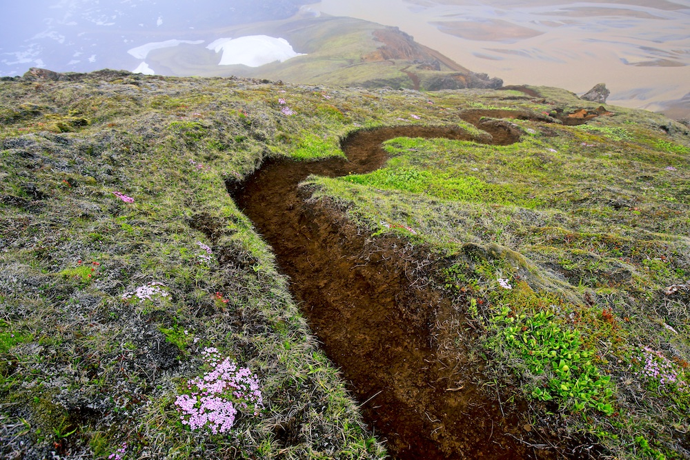 chemin, randonnée, Landmannalaugar, Islande
