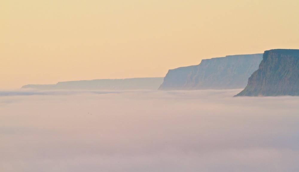 brume, falaises, Latrabjarg, Islande