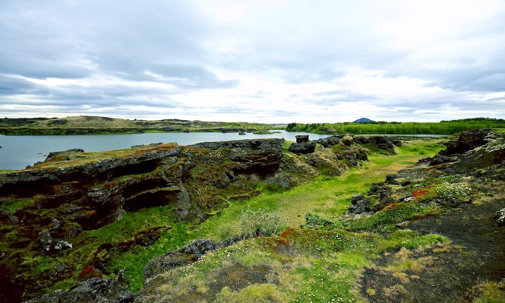 Hofdi, foret, Islande