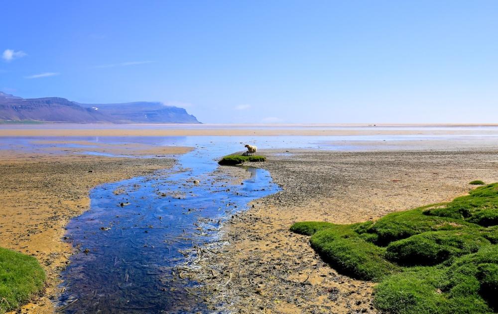 lagune, Baejarvadall, raudisandur, paysages, Islande